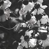 Grow Art Print