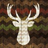 Southwest Lodge - Deer II Art Print