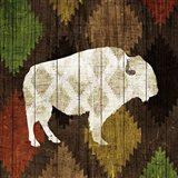 Southwest Lodge - Buffalo Art Print