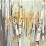 Silver Birch I Art Print