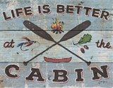 Cabin Fever I Art Print