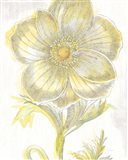 Belle Fleur Yellow II Crop Art Print