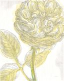 Belle Fleur Yellow III Crop Art Print