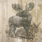 Natural History Lodge VIII Art Print