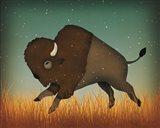 Buffalo Bison II Art Print