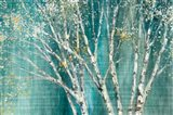 Blue Birch Horizontal Art Print