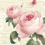 Roses in Paris VI Art Print