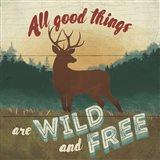 Discover the Wild VI Art Print