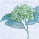Blue Hydrangea II Crop Art Print