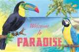 Island Time Toucan Art Print