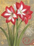 Winter Birds Amaryllis I Art Print