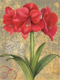 Winter Birds Amaryllis II Art Print