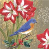 Winter Birds Bluebird Art Print