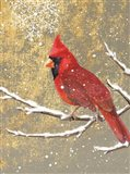 Winter Birds Cardinal Color Art Print