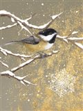 Winter Birds Chickadee Color Art Print