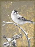 Winter Birds Goldfinch Neutral Art Print