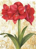 Winter Birds Amaryllis II Gold and White Art Print