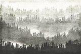 Mountainscape Silver Art Print