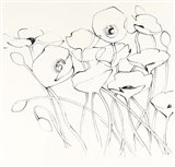 Black Line Poppies I Art Print