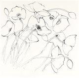 Black Line Poppies II Art Print