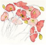Black Line Poppies II Watercolor Art Print