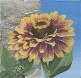 Zinnia Spice Art Print