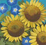 Sunflower Time Art Print