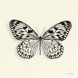 Butterfly V Art Print