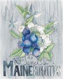 American Berries II Art Print