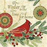 Winter Feathers V Art Print
