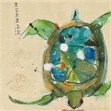 Chentes Turtle Light Art Print