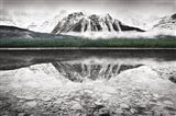 Waterfowl Lake I BW with Color Art Print