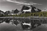 Amethyst Lake Reflection BW with Color Art Print