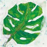 Single Leaf Play on White Art Print