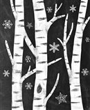 Snowy Birches Art Print