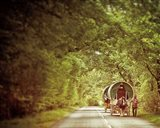 The Road to Appleby Art Print