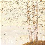 Golden Birch II Off White Art Print