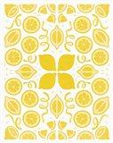 Retro Lemon Otomi Monotone Art Print