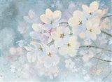 Splendid Bloom Art Print