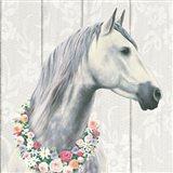 Spirit Stallion I on wood Square Art Print