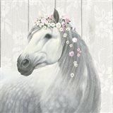 Spirit Stallion II Square Art Print