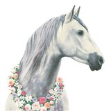 Spirit Stallion I Square Art Print
