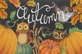 Harvest Owl II Art Print