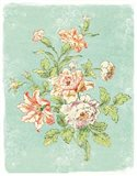 Cottage Roses IX Bright Art Print