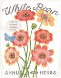 White Barn Flowers III Art Print