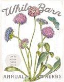 White Barn Flowers VI Art Print
