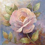Roses on Blue IV Crop Art Print
