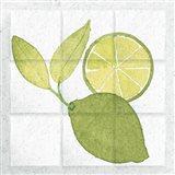 Citrus Tile VII Art Print