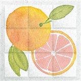 Citrus Tile VIII Art Print