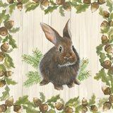 Woodland Critter IV Art Print